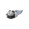 Silver Bear Ammo